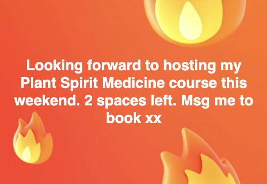 Plant Spirit Medicine course 23 Feb